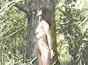 Hidden pleasure Inc. Girl Noosed in wood (short)